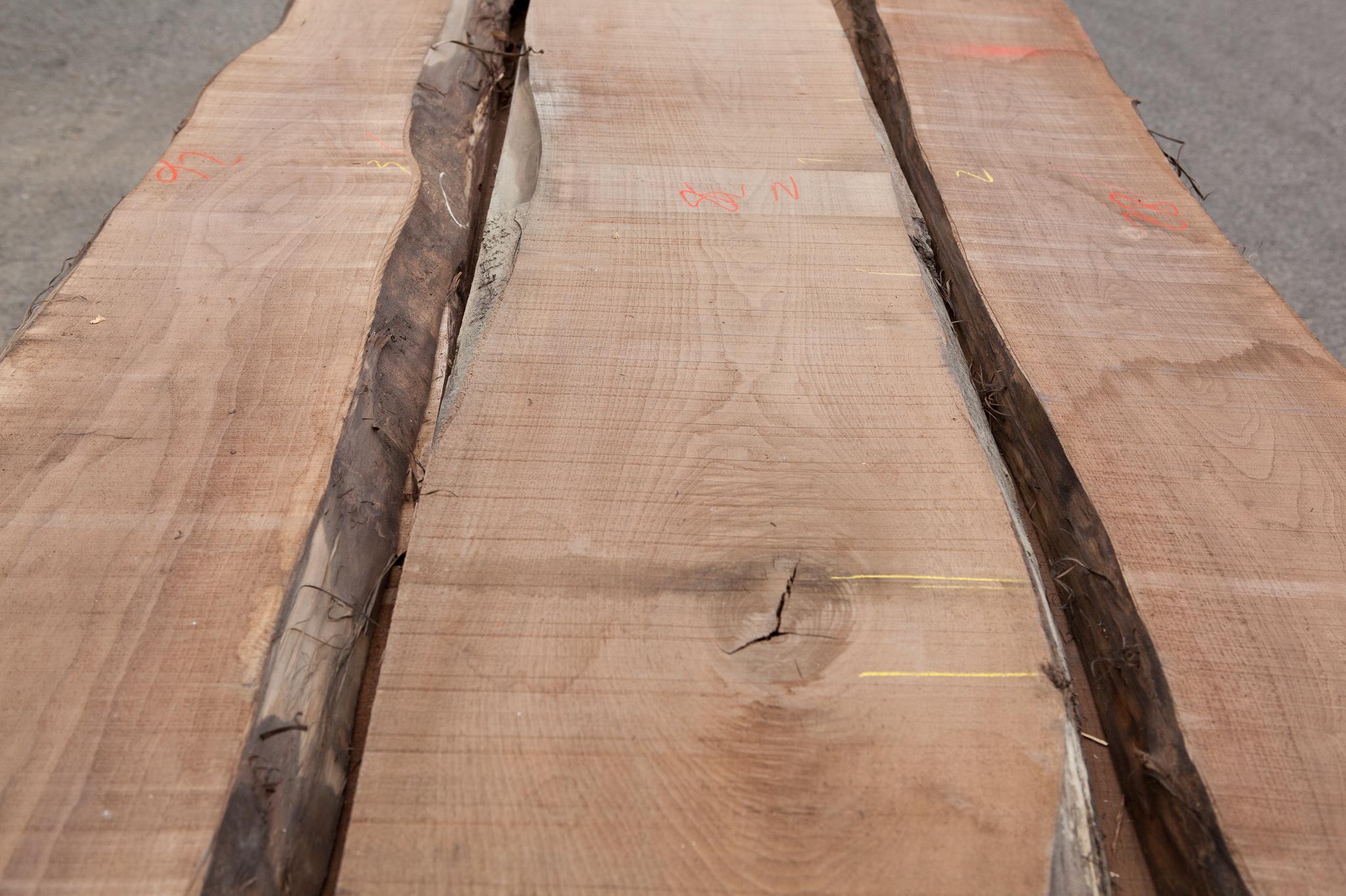 am. ořech řezivo 40 mm, komorově sušené